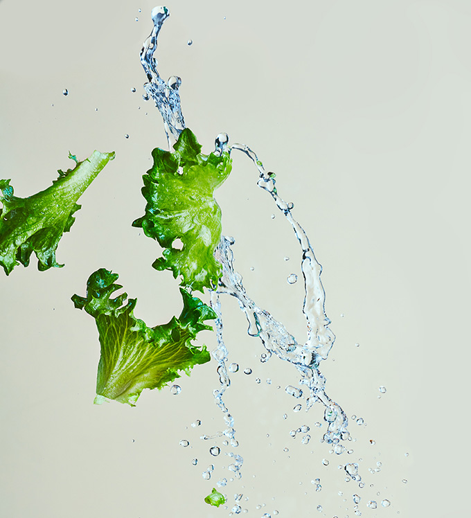 Crispy Leaf Lettuce in the Air with Water