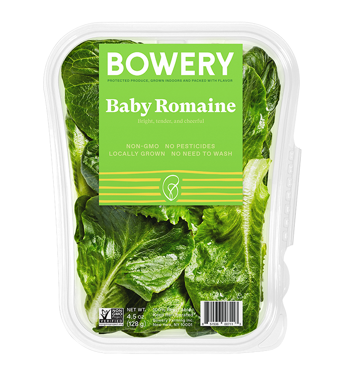 Baby Romaine Package