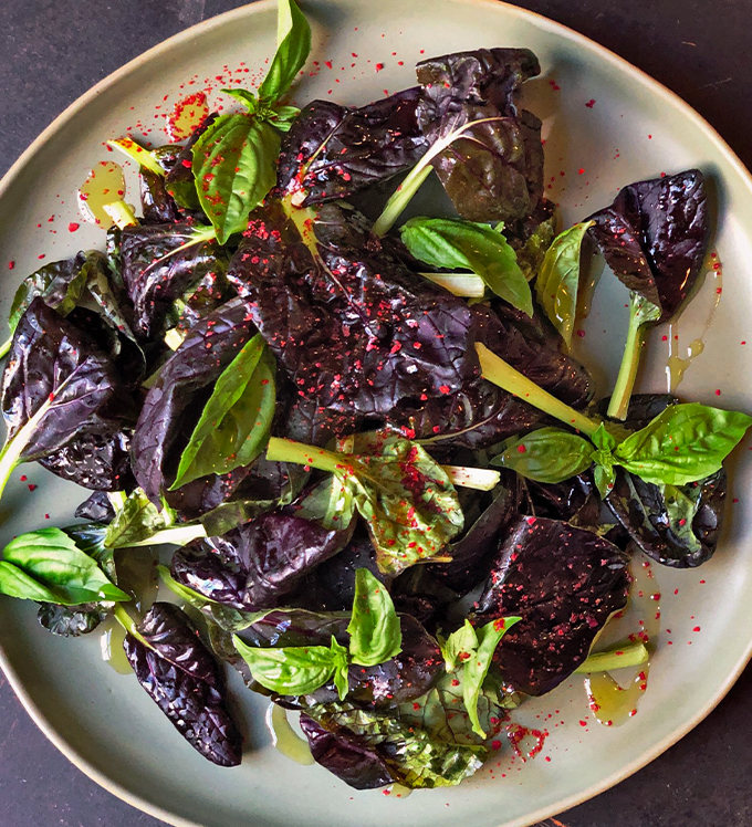 Bowery Bok Choy and Basil with Ginger Orange Vinaigrette