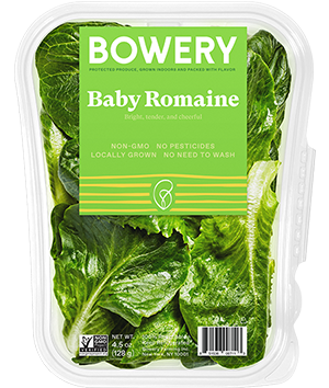 Bowery Baby Romaine Package