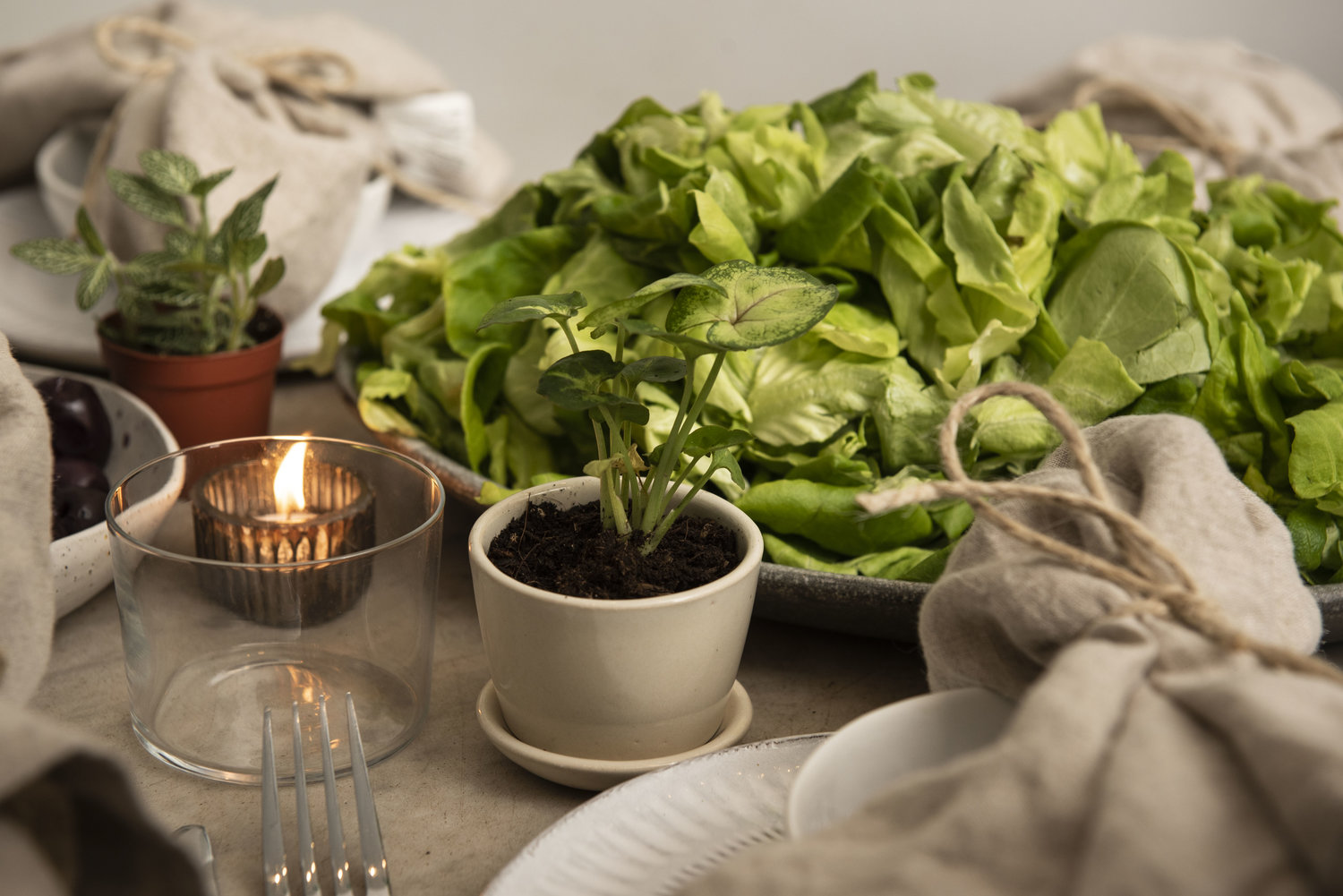 What We Learned at our Food Tabletop & Plant Styling Workshop6