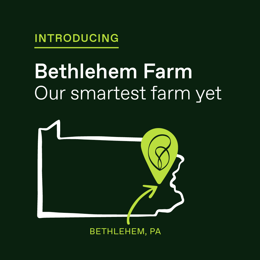 We're New In Town: Hello Bethlehem, PA