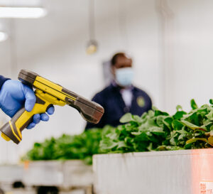 Scanning in a Bowery Farm for Traceability